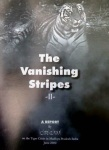 Vanishing stripes2